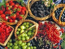 хранение сухих фруктов