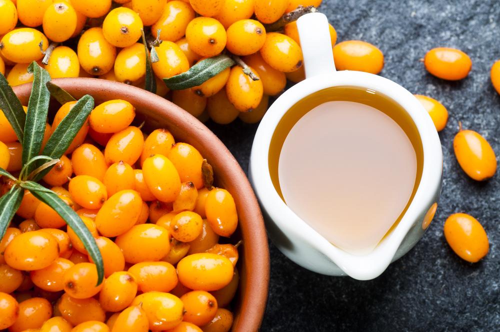 Компот изоблепихи— рецепты изсвежих изамороженных ягод