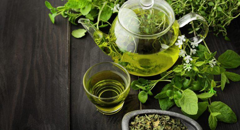Польза зелёного чая, особенности ипротивопоказания