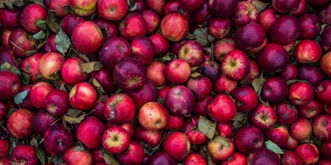 Красные яблоки — источник витамина А